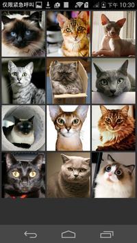 Which Pet U Are apk screenshot