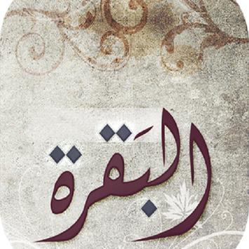 سورة البقرة بصوت اشهر 10 مقرئين poster