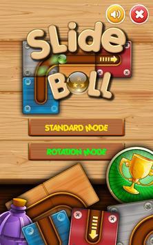 Slide Ball & Unblock poster