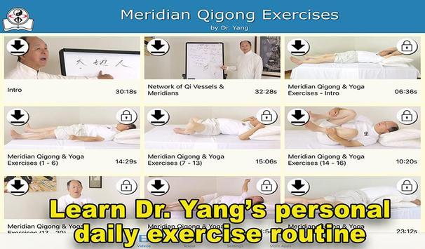 Meridian Qigong Exercises poster