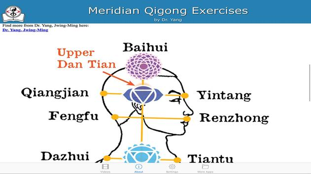 Meridian Qigong Exercises apk screenshot