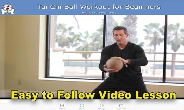Tai Chi Ball Beginner apk screenshot