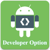 Shortcut for Enable & Disable Developer Options icon
