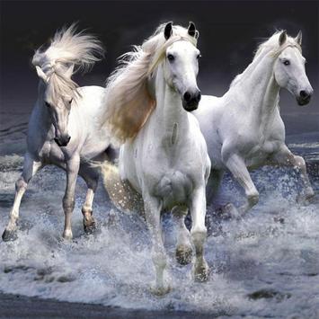 Horses Jigsaw Puzzles apk screenshot