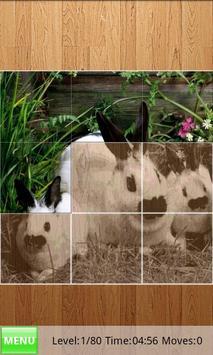 Rabbits Jigsaw Puzzles poster