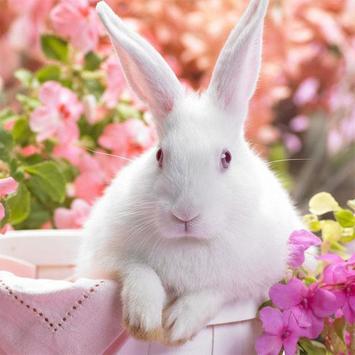 Rabbits Jigsaw Puzzles screenshot 11