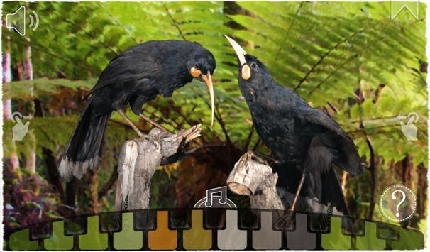 12 Huia Birds apk screenshot