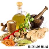 Obat Herbal icon