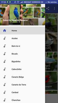 Passaros Cantos De Patativa screenshot 2