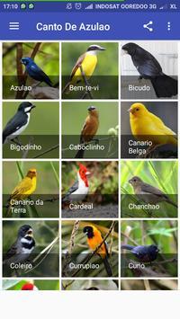 Passaros Brasileiros De Canto apk screenshot