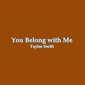 You Belong With Me Lyrics icon