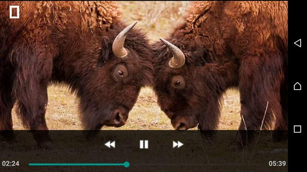 FLV AVI Video Mp4 Player screenshot 2