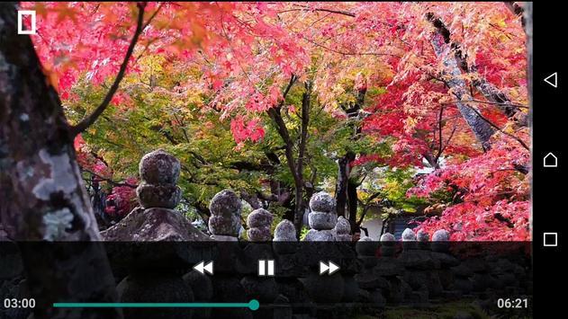 Download Mp4 Player screenshot 1