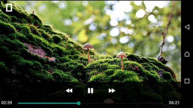 Quick Mp4 Player Formats screenshot 1