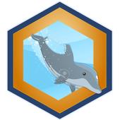 Dolphin Challenge icon