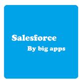 Big Apps Salesforce icon