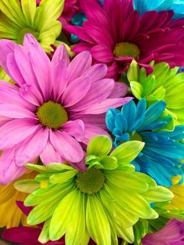 Wallpaper Bunga Cantik Dan Indah Für Android Apk Herunterladen