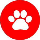 Pet Pronto icon