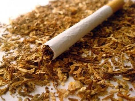 Tobacco Smoking poster