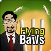 Kris Srikkanth's Flying bails icon