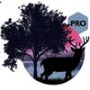 Amazing Land Pro icon