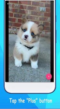 Dog Wallpaper Cute Shibaken's HD screenshot 1