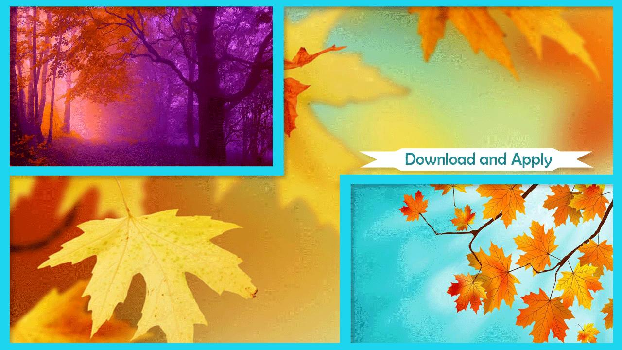 Maple Leaf Hd Wallpaper For Android Apk Download