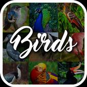 Bird Encyclopedia icon
