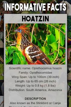 Bird Encyclopedia screenshot 2