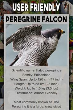 Bird Encyclopedia screenshot 4