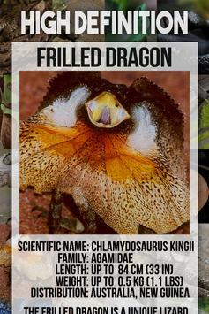 Reptile Animal Encyclopedia poster