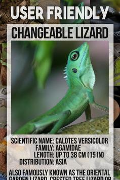 Reptile Animal Encyclopedia screenshot 3