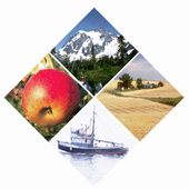 2015 Combined Summer Institute icon