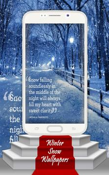 Winter Snow Wallpapers poster