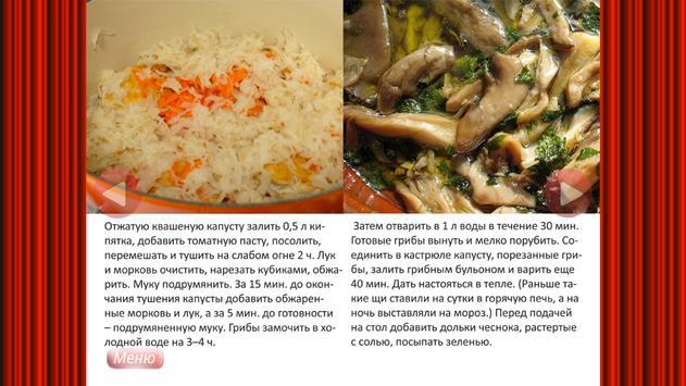 Вегетарианская кухня - рецепты apk screenshot