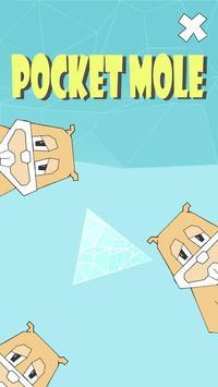 Tap Mole poster