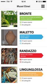 Musei Etnei poster