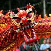 Dragon Festivall Wallpapers icon