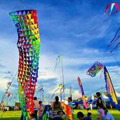Festival of Kites Wallpapers icon