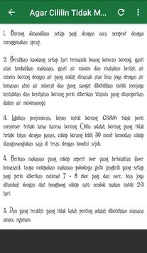Cililin Gacor Tanpa Rem screenshot 5