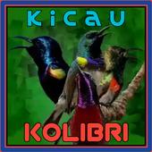 Kicau Kolibri Terlengkap icon