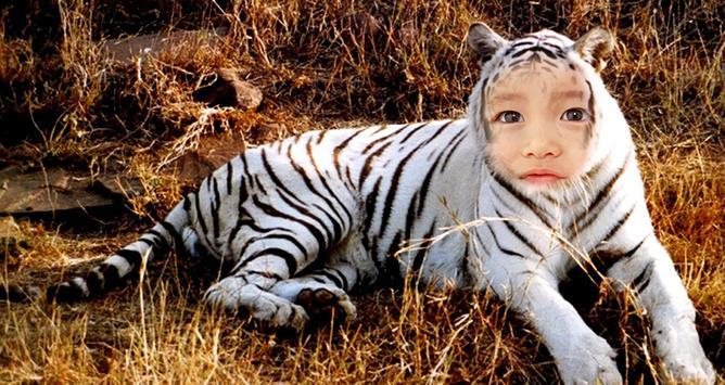 Tiger Photo Editor apk screenshot