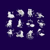 Знаки зодиака icon