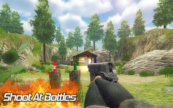 Bottle Shooter Expert 3D poster