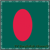 TV Bangladesh Channels Info icon
