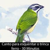 Canto Esquenta Trinca Ferro icon