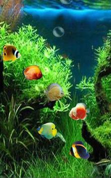 One Plus 3 Animated Wallpapers apk screenshot