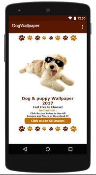 Cute Dog Pet Wallpaper!! poster