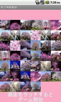 Sakura Concentration apk screenshot