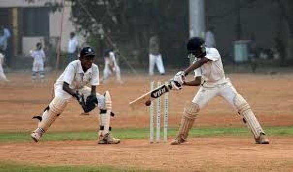 Cricket Wallpapers HD FREE apk screenshot